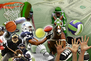 Online Sports Betting Destinations Offer Various Sorts Of Favor